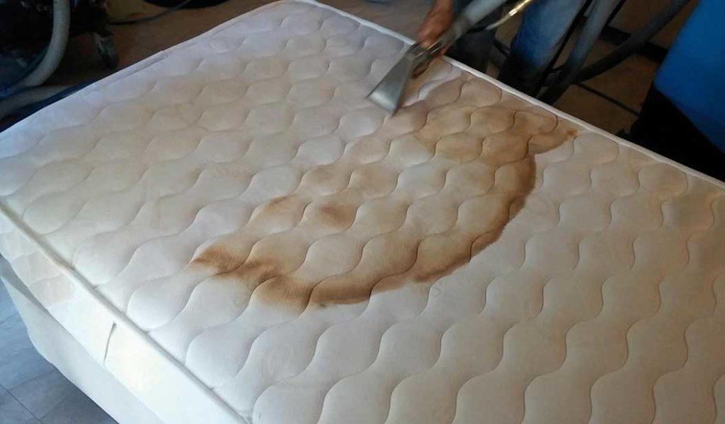lavagem-de-colchao1-1024x600  STARLINE BRASIL-